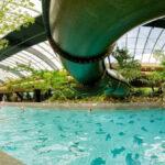 Leuk vakantiepark in Limburg met indoor zwemparadijs
