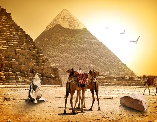 Familierondreis Egypte