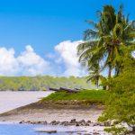 Indrukwekkende familierondreis door Suriname & Curaçao