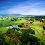Indrukwekkende rondreis door Tanzania en Zanzibar