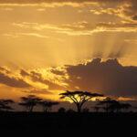 Indrukwekkende familierondreis door Zuid-Afrika