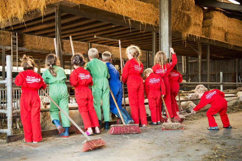FarmCamps-Nederland-tieners