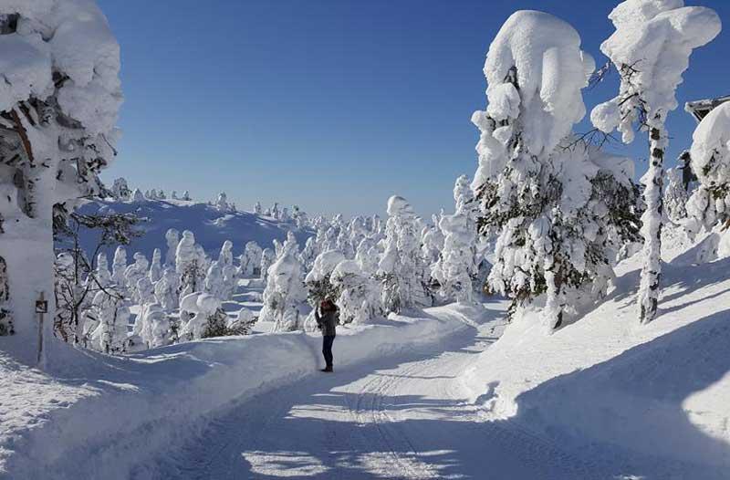 Wintersporten in Finland met tieners
