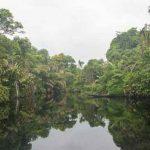 Leuke groepsreis voor jongeren door de natuur van Costa Rica