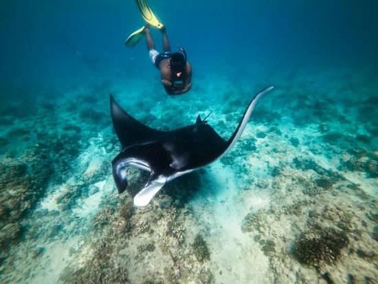 Haal je duiklicentie tijdens een rondreis met leeftijdsgenoten