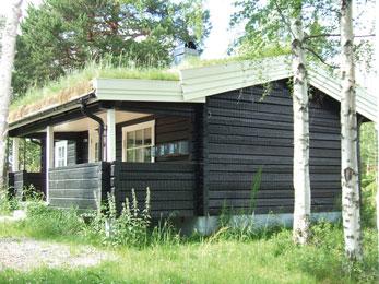 Ontdek de natuur vanuit een leuk vakantiepark in Zweden