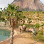 Bijzonder resort midden in een dieren- en waterpark aan de Costa Blanca