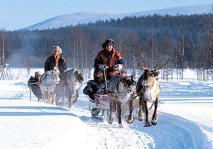 8-Daagse rondreis door het adembenemende Finland