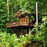 Prachtige 16-daagse rondreis door het mooie Suriname