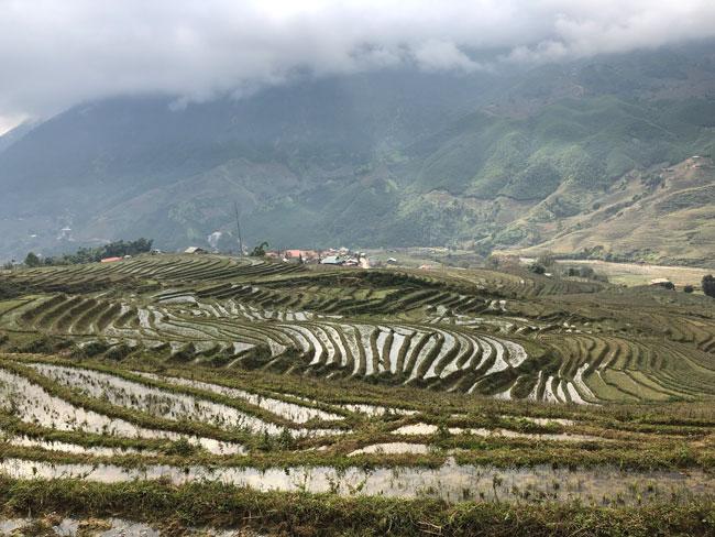 De rijstvelden van Sapa