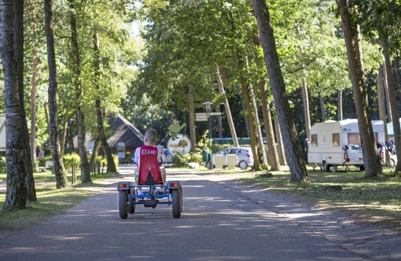 Vakantiepark Arnhem met tieners