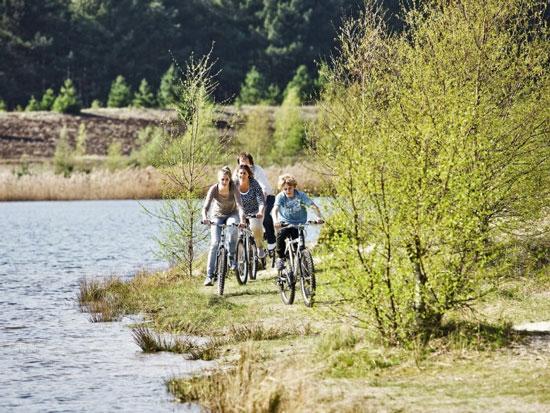 Vakantiepark België met tieners