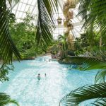 Geweldig vakantiepark met top activiteiten in Belgie