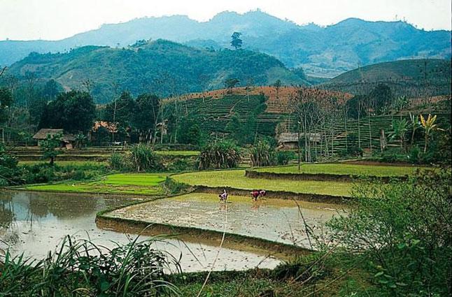 Rondreis Vietnam met tieners