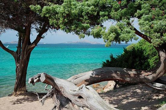 Camping Sardinië met tieners