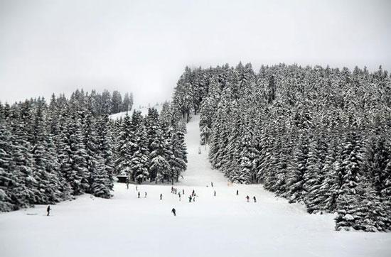 Wintersport in Harz
