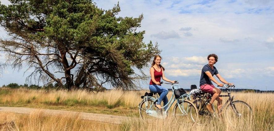 Vakantiepark Veluwe met tieners