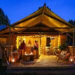 Gezellige camping in de natuur van Twente