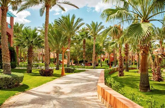 Vakantie Sharm el Sheikh met tieners