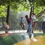 Leuk vakantiepark met subtropisch zwembad in Limburg