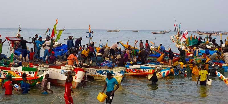 Visserij, visafslag in Senegal