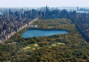 Levendige stad New York ontdekken